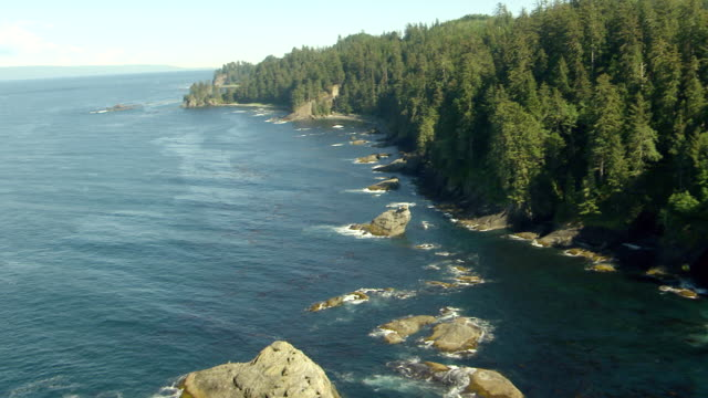 ws aerial zi shore of cape flattery / washington, united states - purity stock videos & royalty-free footage