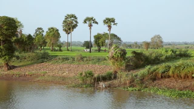 WS POV Shore of Mekong River / Saigon, Vietnam
