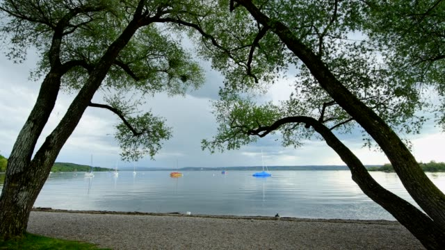 shore with trees in spring, herrsching am ammersee, fuenfseenland, upper bavaria, bavaria, germany - real time stock videos & royalty-free footage