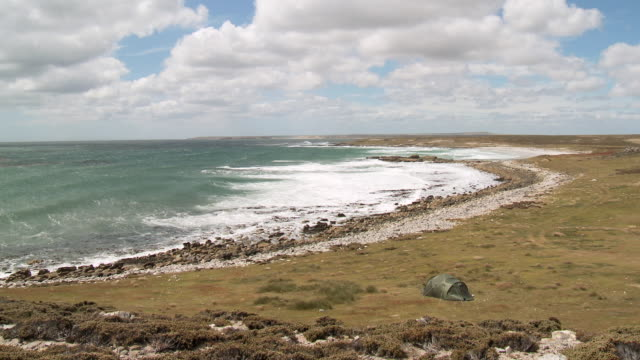 ws shoreline of islands in rough weather with waves / elephant beach,  falkland, islands - falkland islands stock videos and b-roll footage