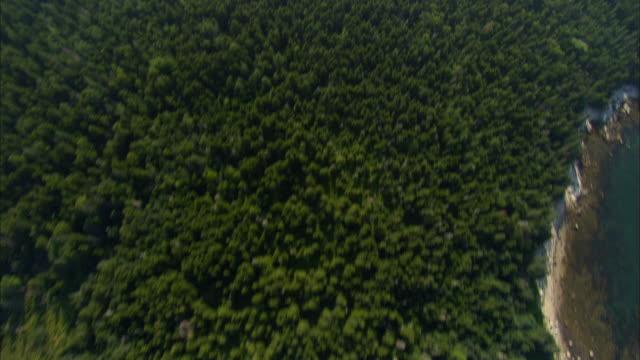 stockvideo's en b-roll-footage met aerial, shoreline, penobscot bay, maine, usa - noord atlantische oceaan