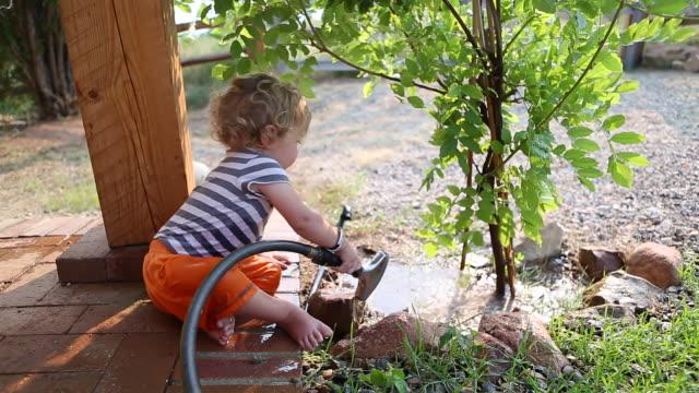 vídeos de stock e filmes b-roll de ms short of baby boy watering the tree with hose / santa fe, new mexico, united states  - vida de bebé