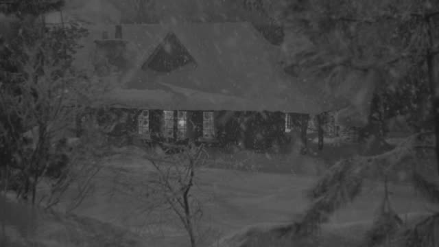 ms shot at mountain lodge through trees during snow falling and house covered in snow - log cabin stock videos & royalty-free footage