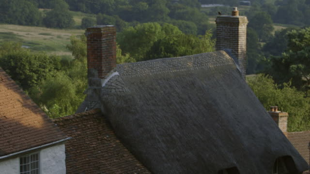 MS TU  Shot Cottages down steep slope, gold hill  / Shaftsbury, Devon, United Kingdom