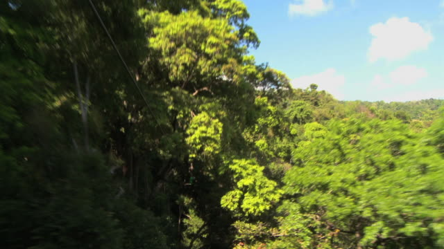 pov shot flying through the trees on a zip line - ロープスライダー点の映像素材/bロール
