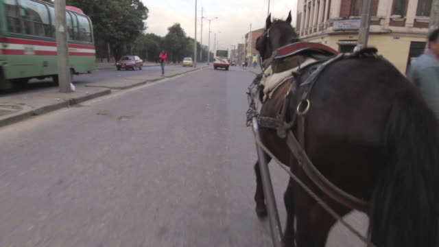 POV shot from a cart as a horse travels along a road in the Bogota.
