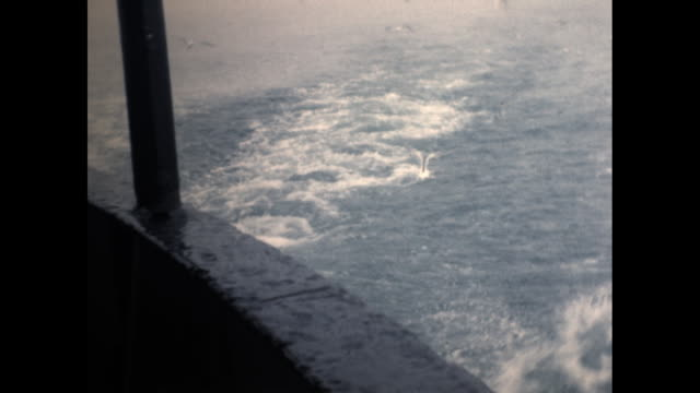 shot from a moving ship of the waves in the ocean and seagulls flying behind - aquatic organism stock videos & royalty-free footage