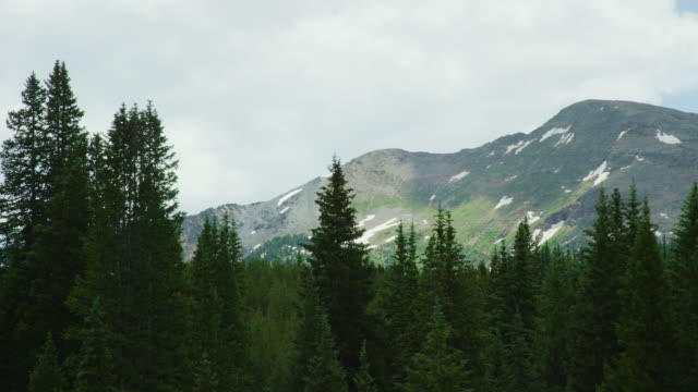 shot from a moving vehicle of the san juan mountains in colorado as seen from red mountain pass (million dollar highway/us 550) through the rocky mountains in summer on a partly cloudy day - treelined stock videos & royalty-free footage