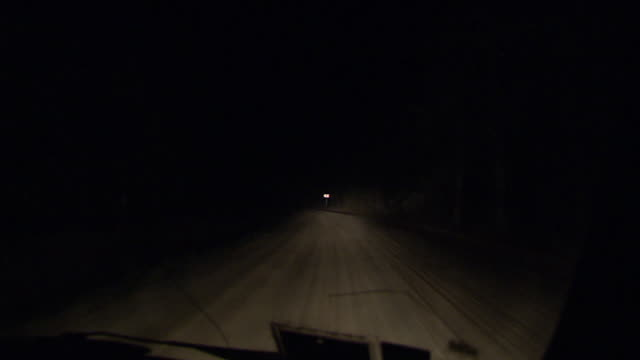 POV shot from a vehicle as it drives along a forest road at night.