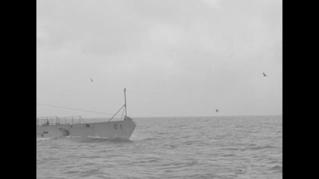 vídeos de stock, filmes e b-roll de shot from escort ship falcon of submarine cruising along on surface seagulls flying around it / shot from falcon of group of seagulls hovering next... - passear sem destino