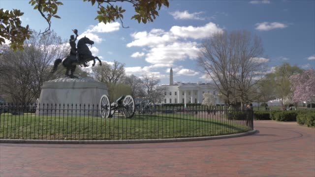 shot from lafayette square of white house and cherry blossom, washington dc, united states of america, north america - lafayette square washington dc stock videos & royalty-free footage