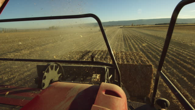 shot from the back of a tractor pulling a hay mower through a corn field at harvest with mountains in the background under a clear, blue sky - hay background stock videos & royalty-free footage