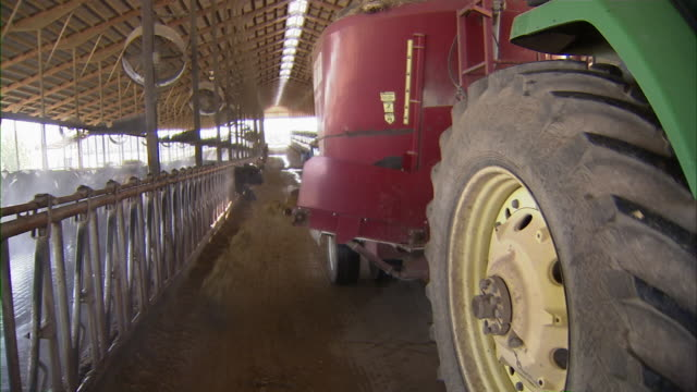 shot from the side of the tractor as it pulls the feed dispenser in tow. - bovino video stock e b–roll