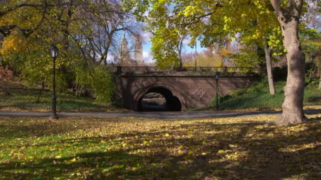 vidéos et rushes de shot of a bridge in central park, new york city on a fall day.  the trees are in full fall color and the leaves are starting to fall. a police officer on horseback is seen crossing over the bridge - central park