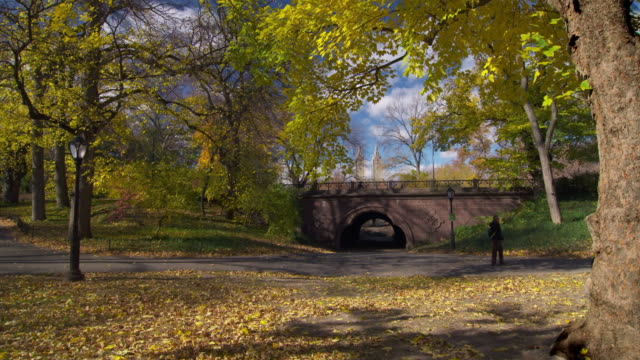 shot of a bridge in central park, new york city on a fall day.  the trees are in full fall color and the leaves are starting to fall. the san remo apartments can been seen in the background - remo stock videos and b-roll footage
