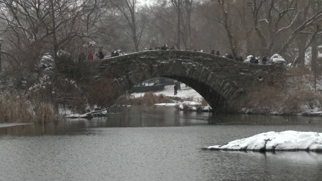 shot of a bridge with people on it,  over a stream, in central park, new york city on a snowy winter day. ducks swing along the stream - swing bridge stock videos & royalty-free footage