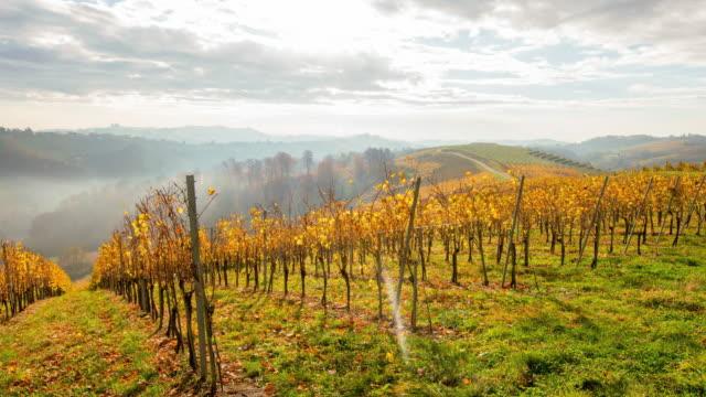 t/l 4k shot of a cloudscape over autumn vineyards - prekmurje stock videos & royalty-free footage