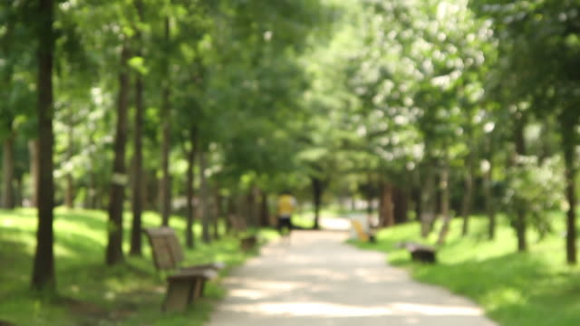 vidéos et rushes de shot of a park promenade - fondu d'ouverture