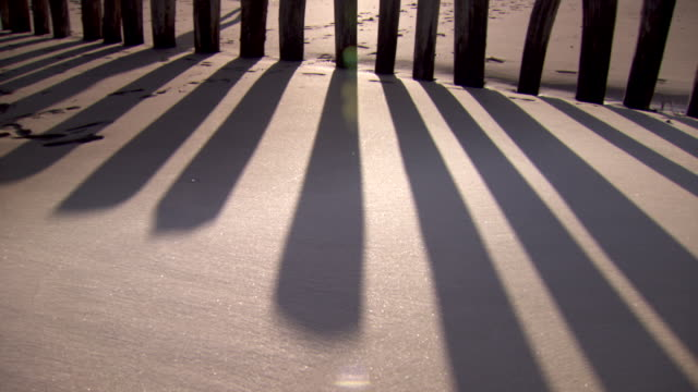 Shot of a persons shadow moving past a row of groynes on a beach.