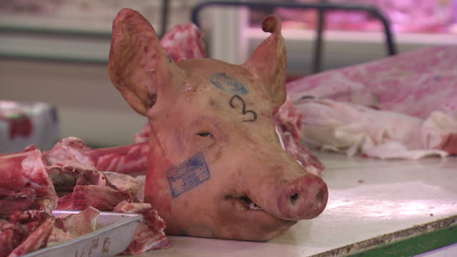 vídeos de stock e filmes b-roll de shot of a pigs head being lifted off a butchers counter. - porco