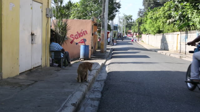 santa domingo dominican republic november 29 2012 shot of a small street in the poor neighbourhood 'los alcarrizos' in santa domingo on the sidewalk... - santo domingo dominican republic stock videos & royalty-free footage