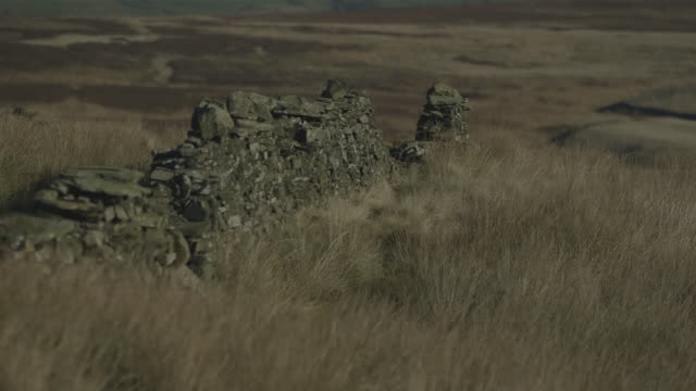 ws shot of a stone built wall on moorland / north yorkshire, united kingdom  - stone wall stock videos and b-roll footage