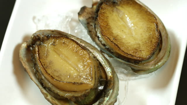Shot of Abalone