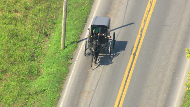 MS AERIAL TS Shot of Amish driving horse and buggy on road with cars / Pennsylvania, United States