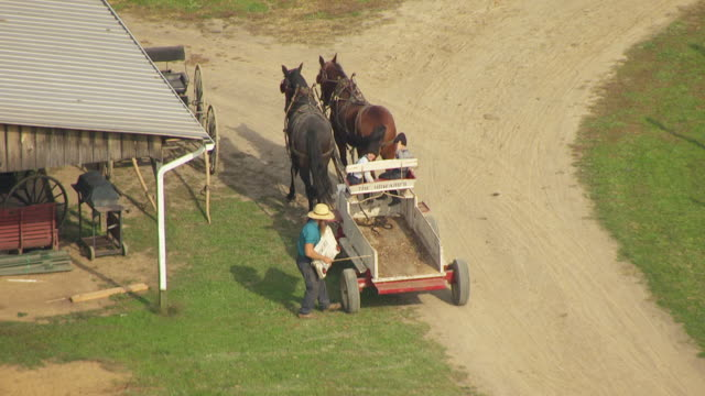 MS AERIAL Shot of Amish man installing back door to carriage with two sons and horses / Bergholz, Ohio, United States