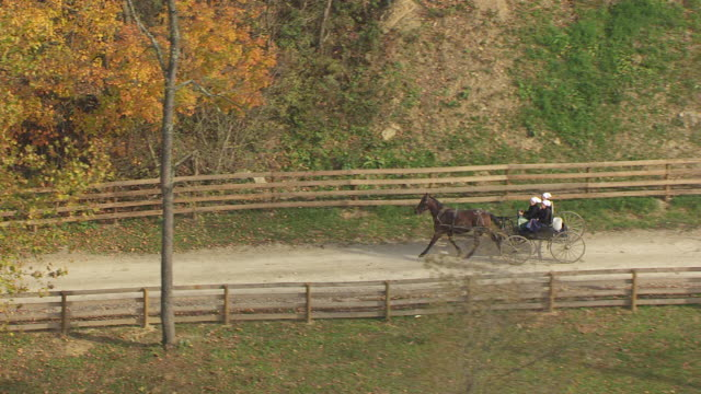 vídeos de stock, filmes e b-roll de ms ts aerial shot of amish women riding horse drawn carriages down road in rural area / bergholz, ohio, united states - animal de trabalho