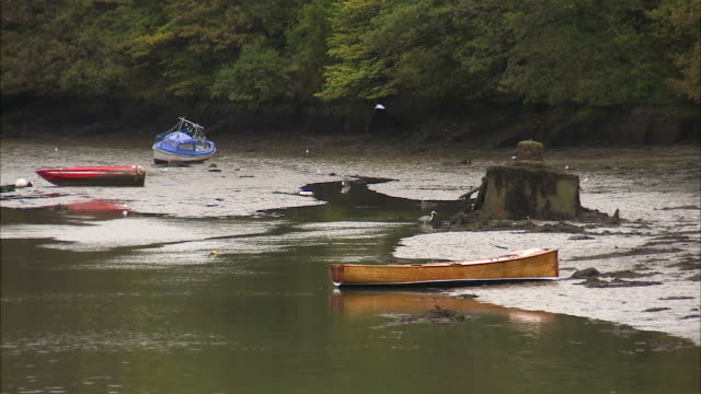 shot of an irish river at low tide - low tide stock videos & royalty-free footage