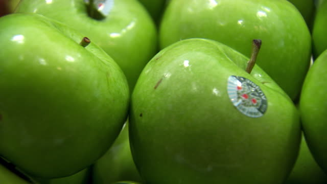 ecu pan shot of apples / sydney, new south wales, australia - apple fruit stock videos and b-roll footage