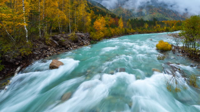 MS T/L Shot of Arazas River at Ordesa National Park / Ordesa, Huesca, Spain