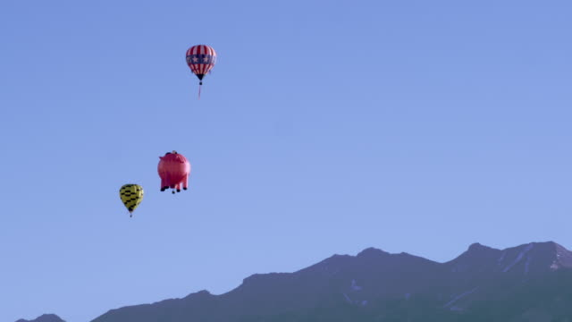 Shot of assorted hot air balloons.