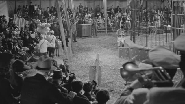 ms pov shot of audience in circus  - circus stock videos & royalty-free footage