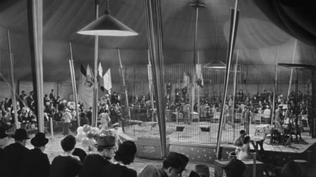 ms shot of audience perspective to lion cage in center at circus - circus stock videos & royalty-free footage