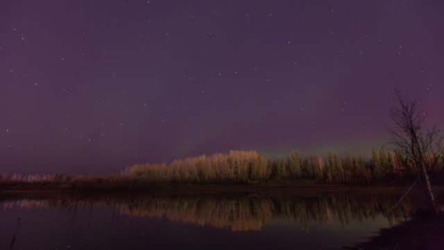 shot of aurora polaris and reflection of the lake at night - 30秒以上点の映像素材/bロール
