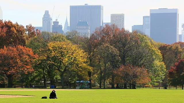 ms pan shot of autumn color trees and manhattan skyline and cloud at great lawn / new york, united states - great lawn stock videos and b-roll footage