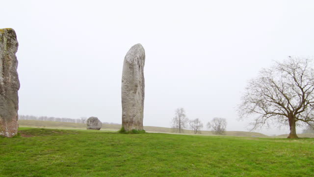 ms pan shot of avebury rocks, tree and green landscape / wiltshire, england, united kingdom - wiese stock videos & royalty-free footage
