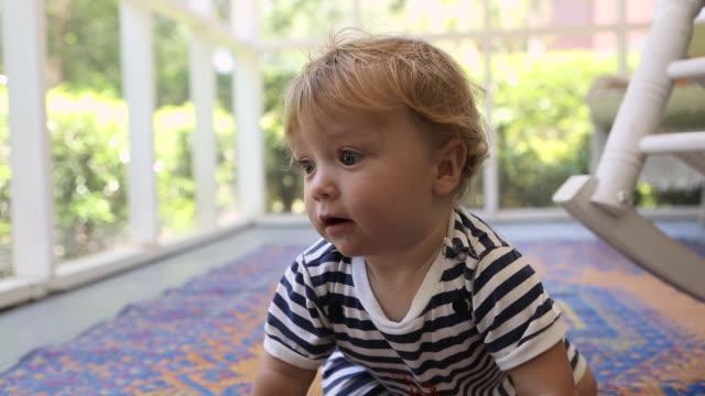 vídeos de stock, filmes e b-roll de ms shot of baby boy crawling around screen porch / st simon's island, georgia, united states - só um bebê menino