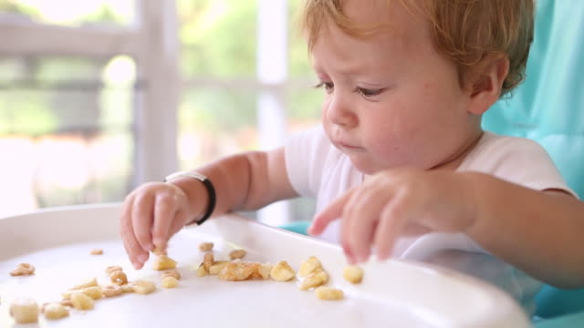 cu shot of baby boy eating in his high chair / st simon's island, georgia, united states - arme hoch stock-videos und b-roll-filmmaterial