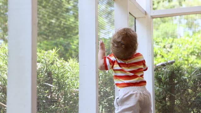 vídeos de stock, filmes e b-roll de ms shot of baby boy standing in side porch / st simon's island, georgia, united states - só bebês meninos