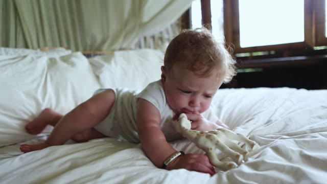 vídeos de stock, filmes e b-roll de cu shot of baby chewing on his toy / ubud, bali, indonesia - só um bebê menino