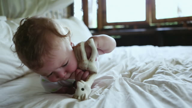 cu shot of baby chewing on his toy / ubud, bali, indonesia - 男の赤ちゃん一人点の映像素材/bロール