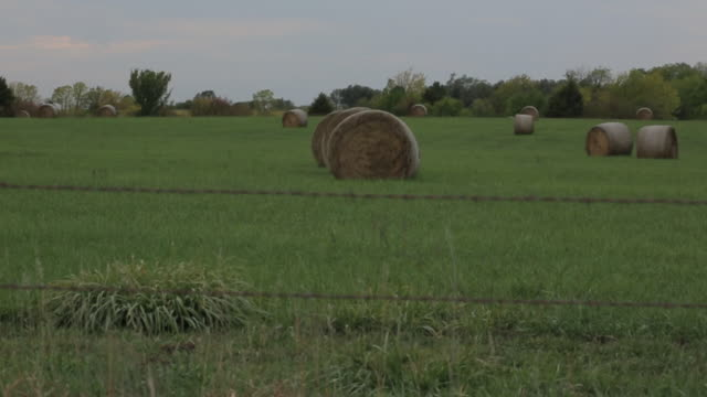 ms pan shot of barb wire and hay bales at field / new york, kansas, united states - hay field stock videos & royalty-free footage