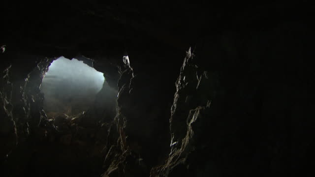 shot of bat flying away in cave at namhan river (tourist attraction) - cave stock videos & royalty-free footage
