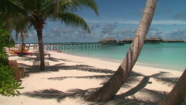 MS Shot of Beach/ Halavili, Maldives