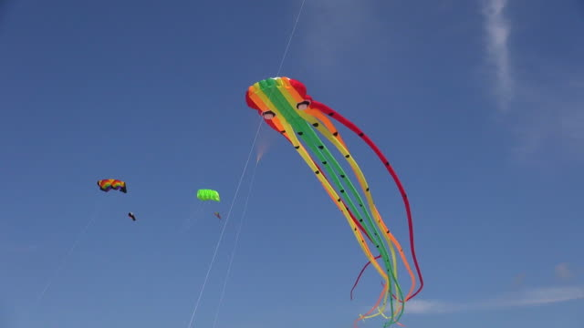 ms shot of beach kites flying in sky, north sea north frisia, / st. peter ording, schleswig holstein, germany - kite toy stock videos and b-roll footage