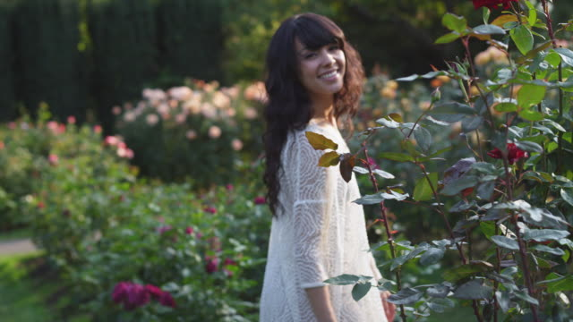 ms ts slo mo shot of beautiful brunette walking in rose garden / portland, oregon, united states  - 花壇点の映像素材/bロール