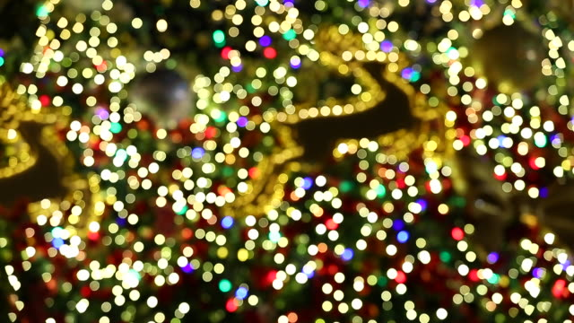 Shot of beautiful christmas tree and blinking christmas lights